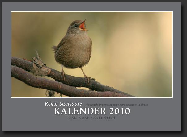 Remo Savisaar :: looduskalender