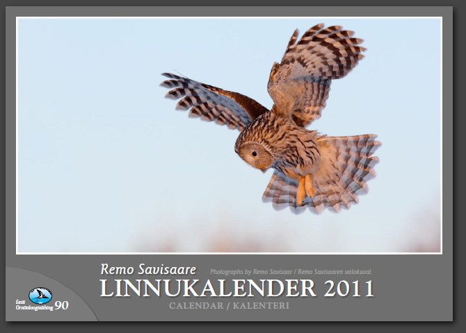 Remo Savisaar kalender 2011