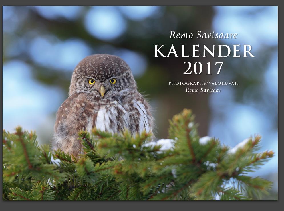Remo Savisaar looduskalender kalender calendar kalenteri viro photographs valokuvat Eesti loodus Estonian Estonia Baltic nature wildlife photography photo blog loodusfotod loodusfoto looduspilt looduspildid